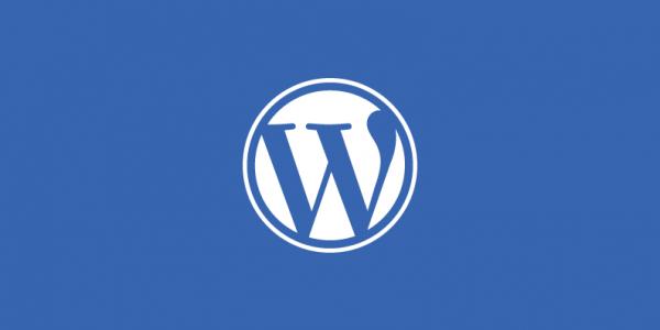 Curso WordPress Skype